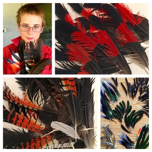 Blog March 2016 feathers Image